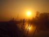 SUNRISE IN 2017 (hans 1960) Tags: outdoor sun sunrise sonne sonnenaufgang nature home heimat trees wasser water fluss river golden licht light spiegelung mirrow morning stille stillness ruhe frost cold landschaft landscape