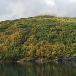 Ålesund, Norway (44 of 102) thumbnail