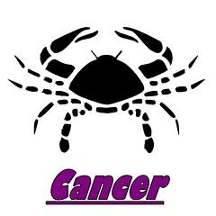 Anglų lietuvių žodynas. Žodis cancer reiškia n vėžys (liga); perk. blogis, yda. gali būti ir horoskopo ženklas lietuviškai.
