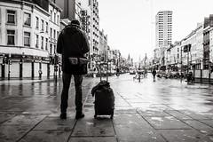 arriving in antwerp (Gerard Koopen) Tags: belgië belgium antwerpen antwerp city tourist arriving luggage man straat street straatfotografie streetphotography candid bw blackandwhite blackandwhiteonly nikon d810 35mm 2017 gerardkoopen