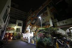 IMG_4971 (digitalbear) Tags: canon eos 6d sigma 14mm f18 dg art nakano tokyo japan fujiya camera fujiyacamera centralpark nightscene sunplaza sun plaza kirin hq central park south christmas illumination