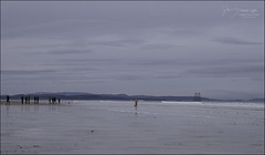 359 - Walk Before Lunch (North Light) Tags: coast beach morayfirth findhorn morayshire scotland