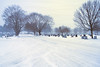 Untitled (Chancy Rendezvous) Tags: cold snow storm winter wind windy freezing ice weather cemetery hope worcester massachusetts newengland