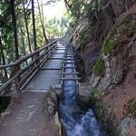 Berkwaal - 1241 Meter über Meer thumbnail