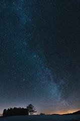 A Sky Full Of Stars (desomnis) Tags: night nightsky nightphoto astro astrophotography stars milkyway milchstrase milkywaygalaxy trees longexposure longtimeexposure longexposuretime tamronsp2470mmf28 tamron2470mm tamron2470mmf28 tamron tamron2470 5d canon5dmarkiv canon5d desomnis winter mühlviertel oberösterreich upperaustria austria österreich galaxy firmament