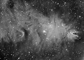 NGC2244 Cone nebula and Christmas Three cluster