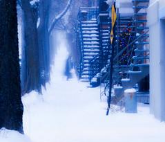 affronter l'année qui vient (photosgabrielle) Tags: photosgabrielle streetphotography winter hiver neige snow people urban montreal city urbain
