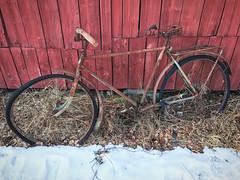 (Sameli) Tags: old bicycle bike rust rusty winter snow rekord decay vartiosaari helsinki suomi finland