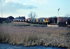 At this time pairs of 20's worked off Warrington, servicing Fiddlers Ferry PS from local colleries as illustrated here.....6K32 20113/106 Fiddlers Ferry-Silverdale Nr Monks sidings 16-02-1991 (the.chair) Tags: 6k32 20113106 fiddlers ferry pssilverdale colliery nr monks sidings warrington feb 1991