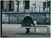 Berliner #790 (.Dirk) Tags: berlin olympusep3 mzuiko7518 street people hund dog prime mft m43 lustgarten jardindagrément