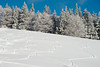 Traces in Snow (G. Lang) Tags: bäume blackforest winter landschaft hiver winterlandschaft allemagne arbres schwarzwald sonyalpha7ii deutschland paysage landscape traces forêtnoire paysagedhiver spuren neuenweg sonyilce7m2 import29122017 trees germany winterlandscape