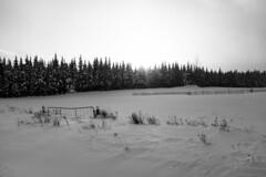 White sunset (Papaye_verte) Tags: paysage landscape winter sunset crépuscule canada neige hiver snow notredamedesbois québec