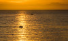 Heading to the Harbor (tquist24) Tags: catalinaisland coronadelmar newportbeach nikon nikond5300 boat evening f geotagged gold island ocean reflection reflections sky sunset water california unitedstates