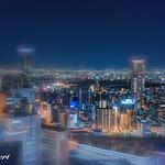 Osaka by Night thumbnail
