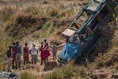 _D2A3927 (elliotsphotos) Tags: masai mara kenya africa safari
