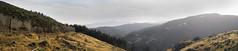 Old Coach Road (Wozza_NZ) Tags: belmont belmontregionalpark bamba lowerhutt wellington newzealand evening cycle cycling mtb mountainbike mountainbiking bike biking valley