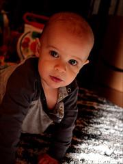 COLE (*Furball*) Tags: cole grandnephew boy child saskatoon saskatchewan canada