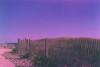 Purple Skies (Kelly Marciano) Tags: film analog 35mm beach sea sand fence summer blue purple shadow light flowers analogue xpro crossprocessed fujichrome slidefilm pentaxk1000 expired