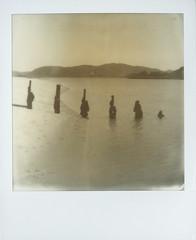 The Silver Sands of Morar (Mark Rowell) Tags: polaroid impossiblefilm instantfilm morar scotland sx70 lofi bw film