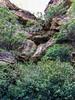 Water course ([S u m m i t] s c a p e) Tags: bluemountains leura nativeplants summer bluemountainsnationalpark newsouthwales australia