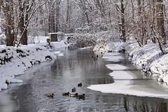 Buck Creek beauty