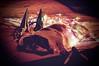 Happy New Year all my Flickr friends! (ladybugdiscovery) Tags: nutmeg newyear happynewyear basset hound dog sleeping party lights