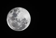 Moon (HUANG.) Tags: moon night superzoom sigma150500 sigma150500mmf563apodgoshsm sigma150500mm14x kenko14x kenkotelepluspro30014xdgx lunar