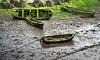 _00Z1890 (zalo_astur) Tags: barca bote musgo fango deterioro abandono mar ribadesella asturias nature naturaleza paisaje