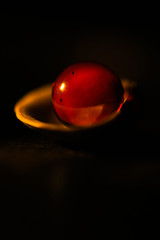 In a Half Shell. (Neal.) Tags: macromondays litbyacandle shell marble red small light candle scotland monday canon 100mm