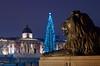 Trafalgare Square, London (raphael.chekroun) Tags: trafalgar square london trafalgarsq christmas tree lion water reflection night