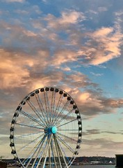 """""""You are somebody's something, but you are also your you."""" ―John Green 🎡 🌅 💦 (anokarina) Tags: appleiphone6 seattle washington wa pnw pacificnorthwest pugetsound greatwheel ferriswheel clouds sunset pikeplacemarket"""