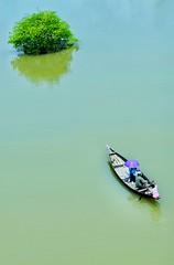 Moving towards Green...  . . . . . . . .#nature #beauty #boat #water #river #life #boatman #lifestyle #street #abstract #conceptual #life # photography # Bangladesh # (eyenantajrean) Tags: lifestyle street boat nature conceptual river beauty abstract boatman water life