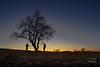 Almendro a contraluz (LANTADA Fotografia) Tags: hdr almendro contraluz arbol tamaradecampos autoretrato castillayleón tierradecampos palencia españa puestadesol