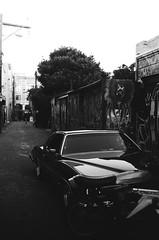 artwalks thru alleys / (luustra) Tags: white black ql ft canon 50 plus panf ilford
