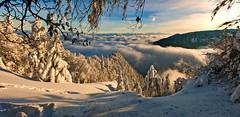 Les Rochers de Tablettes and the Alpes,no.1628+no.1630.Panorama 12 12 12 no. 26 (Izakigur) Tags: nikond700 nikkor neuchatel switzerland svizzera lasuisse lepetitprince thelittleprince ilpiccoloprincipe helvetia liberty izakigur flickr feel europe europa dieschweiz ch musictomyeyes nikon suiza suisse suisia schweiz suizo swiss سويسرا laventuresuisse myswitzerland landscape alps alpes alpen schwyz suïssa luz lumière light licht ضوء אור प्रकाश ライト d700 nikkor2470f28 topf25