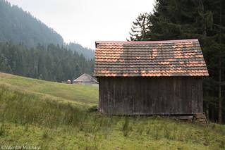 SF_IMG_6237 - Switzerland, Gruyère Region - Hayloft