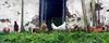 gallinas valladas _ fenced-in hens (Roger S 09) Tags: asturias cabranes santolaya santaeulalia valla cerco fence hff
