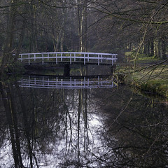 De brug. (Photographer Simon) Tags: wassenaar zuidholland nederland