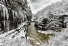 Winter Wonderland (gauravk.sharma) Tags: winter snow wonderland cold blizzard storm ny grandcanyon