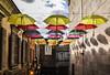 Ever lasting rainbow (dani199_5) Tags: umbrella colors europapark umbrellas regenschirme farben sky shadows schatten oldhouses windows fenster lantern clouds wolken in our world colorsinourworld