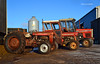 (Zak355) Tags: rothesay isleofbute bute scotland scottish masseyferguson tractors tractor farm farming 390 135 35