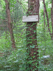 Privy (Kurtsview) Tags: newengland privy outhouse bathroom woods trail green trees sign