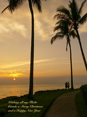 Seasons Greetings (Marian Pollock) Tags: sunset beach couple palms path hawaii maui clouds sea water people sun romantic weather dusk sunshine xmas christmas newyear greetings happy friends ocean tree wailea cloud merry palm silhouette merrychristmas