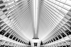 WTC Transportation Hub Oculus (CCYMINUM) Tags: newyorkcity wtc architecture balance bilateralsymmetry blackandwhite building contemporaryart ethereal fineart freedom geometry hub image interior lines lowermanhattan manhattan monochrome oculus oneworldtradecenter path peaceful photo photography print quiet railsystem serenity shoppingmall staion subway symmetrical symmetry transportation urban newyork ny unitedstates