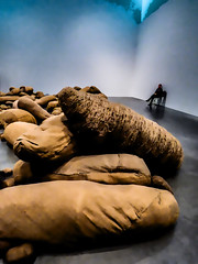 The Watchkeeper (Steve Taylor (Photography)) Tags: cocoon seal magdalenaabakanowicz sack tatemodern shapes bankside art digital sculpture artgallery brown blue mauve black cloth canvas uk gb england greatbritain unitedkingdom london grey man bag bags embryology