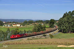 Perbes (REGFA251013) Tags: takargo tren train comboio 6000 euro4000 madera portugal galicia