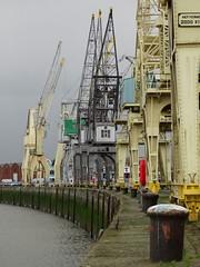 File aan de Schelde (Karl Van Loo) Tags: antwerpen antwerp harbor haven kraan schelde