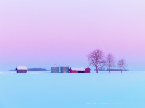 Outbuildings and a prairie winter 2007