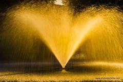Fountain lit by sunset (doveoggi) Tags: 8731 scottsdale greenbelt arizona city sunset fountain lake