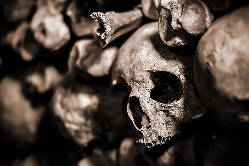 The Bones of What You Believe